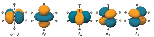 This is what d orbitals look like really close up. Image taken from the UC Davis ChemWiki (http://chemwiki.ucdavis.edu/). CC BY-NC-SA 3.0 US